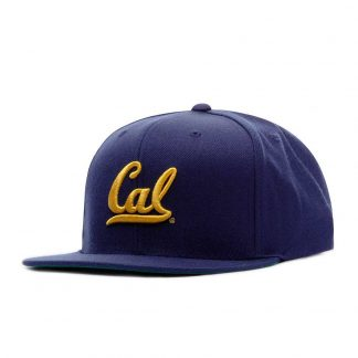 GORRA MITCHELL AND NESS INTL225 CAL
